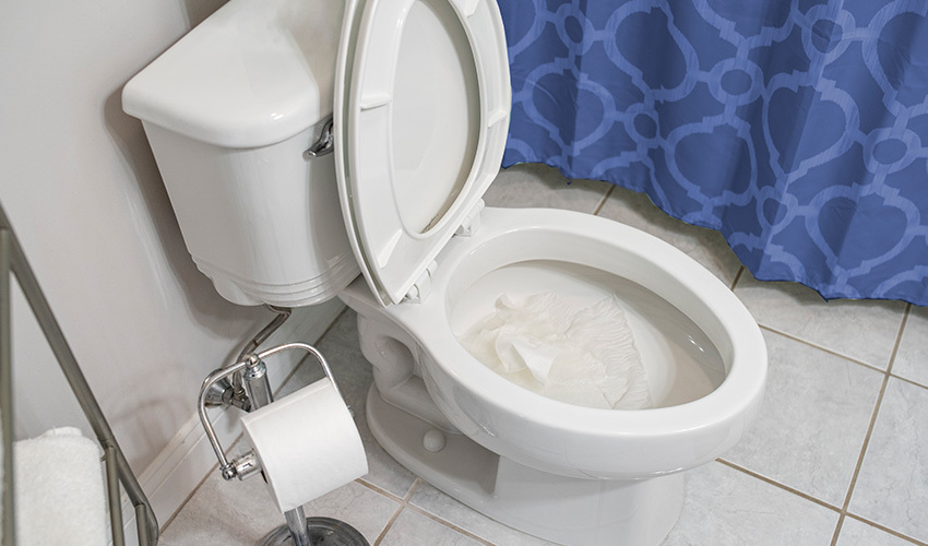 Are Flushable Wipes Really Safe to Flush?